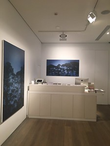 'Shifting Light' Olsen Gallery 63 Jersey Rd Woollahra, Sydney