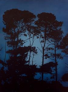 Falling Light, oil on linen 183x137cm $16,500.AUD