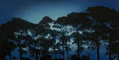 Evening Pines, oil on linen 91x183cm 2017 SOLD