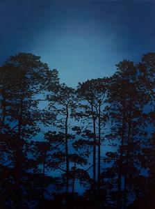 Illumintated Pines, oil on linen 183x137cm 2017 $16,500 AUD