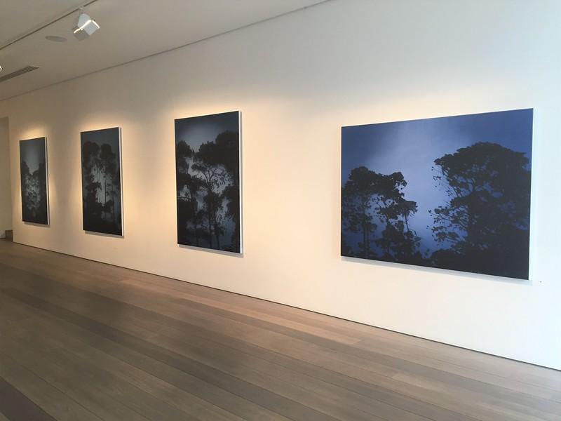 Shiftign Light Olsen Gallery 2017