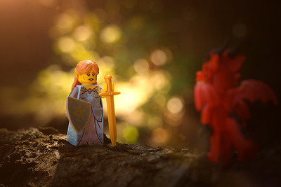 The elven princess