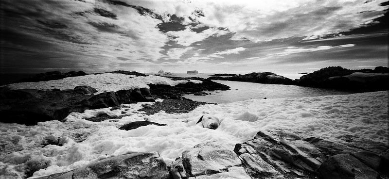 Antarctica #23