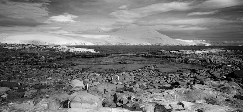 Antarctica #21