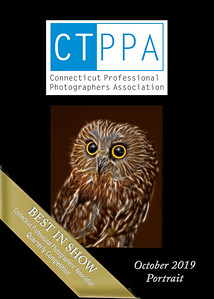 5x7 BISP L Cuchara Owl oct 2019