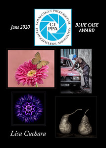 5x7 L Cuchara June2020 CTPPA BLUE CASE QTRLY award
