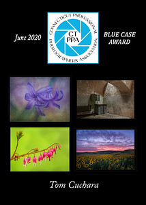 5x7 T Cuchara June 2020 CTPPA BLUE CASE QTRLY award
