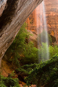 6596-emerald pool-Zion