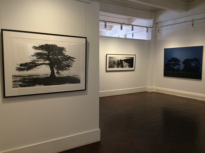 2016 New Works, FLinders Lane Gallery, Melbourne