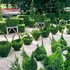 Shaped hedges