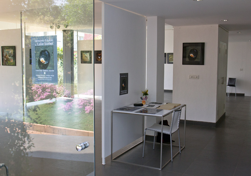 Exhibition Aurora Memory at the Galerie d'art Citadines, Auroville, India, 2013.<br /> An exhibition about the beauty of dewdrops.