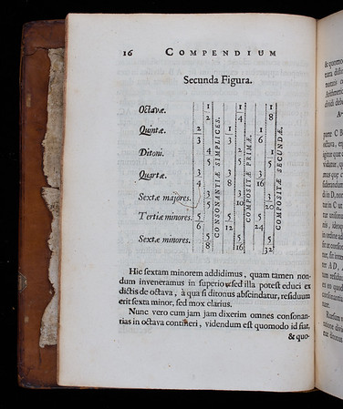 "Descartes' table of consonances. <br><br> <b>Author:</b> René Descartes<br> <b>Title:</b><i>Musicae compendium  </i> [Compendium of music] (Utrecht, 1650) <br> <b>Shelfmark:</b> <a href=""http://idiscover.lib.cam.ac.uk/permalink/f/1nnjft8/44CAM_ALMA21586146700003606""> D.20.52</a><br> <b>Provenance:</b> Bequeathed to Queens' College by John Smith"