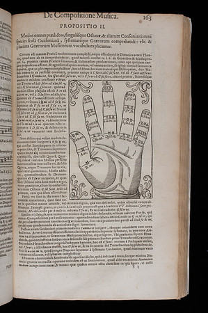 """The so-called 'Guidonian hand' used in the late middle ages as a mnemonic device to enable singers to sight-sing. Each portion of the hand represents a specific note within the hexachordal system. Mersenne referres to it as the 'harmonic hand'. <br><br>  <b>Author:</b> Marin Mersenne<br> <b>Title:</b><i> Harmonicorum</i> [Harmonics] (Paris, 1636) <br> <b>Shelfmark:</b> <a href=""""http://idiscover.lib.cam.ac.uk/permalink/f/1nnjft8/44CAM_ALMA21586143390003606""""> D.1.17</a> <br> <b>Provenance:</b> Bequeathed to Queens' College by John Smith"""
