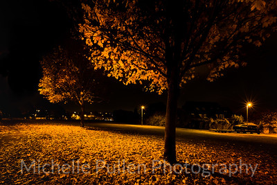 Autumn Streetlight Night