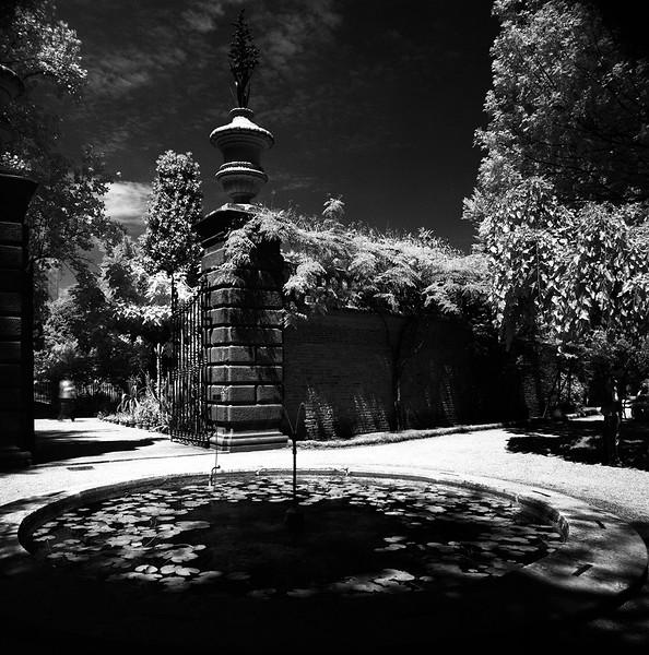10  Botanic Garden in Padova 2