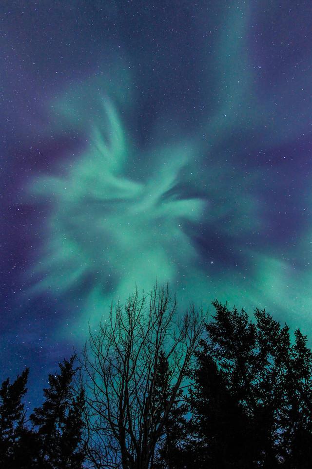 "AURORA 3055<br /> <br /> ""Night Flight"""