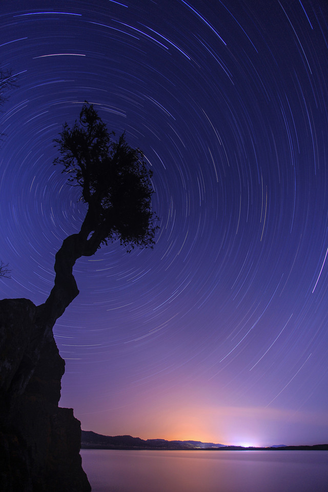"SPIRIT TREE 0194<br /> <br /> ""Spinning Stars over the Spirit Tree""<br /> <br /> Making images of star trails is one of the most interesting things you can do with a camera.  It can also be one of the most difficult and frustrating.  For one thing, you need a lot of patience to sit there for a half hour or more (in the dark!) while your camera records the exposure.  You also need to be very diligent about making sure your camera has obtained good focus and, of course, you need a nice clear night.  If there are any clouds at all (even very thin ones), your star trails will be broken up rather than nice clean lines.  <br /> <br /> Getting good star trail images takes practice.  My first efforts at this type of photography were utterly disappointing.  Sometimes the camera was horribly out of focus, other times the final exposure ended up being either way too bright or way too dark.  On this night when I decided to try a star trail shot over the Spirit Tree, everything came together.  I had a nice calm night with zero clouds in the sky and I set everything perfectly on the camera.  After my 1 hour and 16 minute exposure finished recording, I was very pleased to see this beautiful photo on the camera's LCD screen!<br /> <br /> Camera: Canon EOS 5D Mark II<br /> Lens: Canon EF 17-40mm<br /> Focal length: 17mm<br /> Shutter speed: 76 minutes<br /> Aperture: f4.0<br /> ISO: 50"