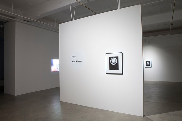 March 9 – April 2, 2016  |  on display at Jacob Lawrence Gallery