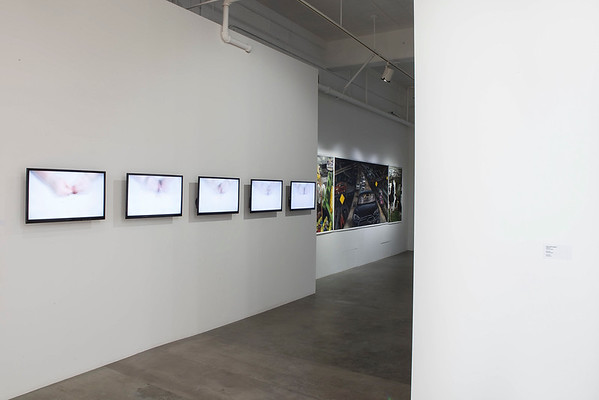 October 21 – November 14, 2015  |  on display at Jacob Lawrence Gallery