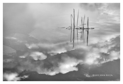 C6 Reflection 5 (16 x 24)
