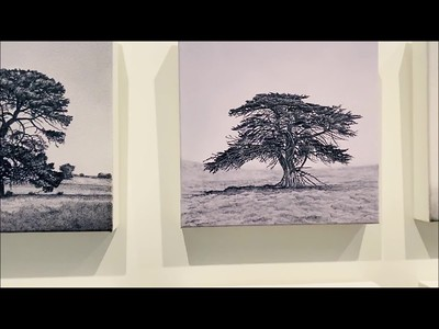 VIDEO of Exhibition