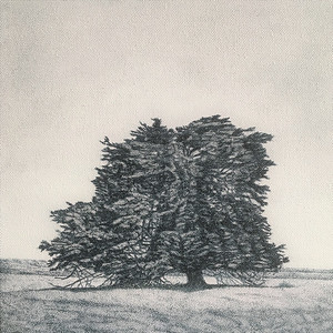 Memoryy Marker - Rosebrook, SOLD