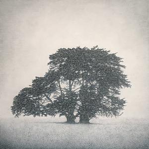 Memory Marker- Allansford, SOLD