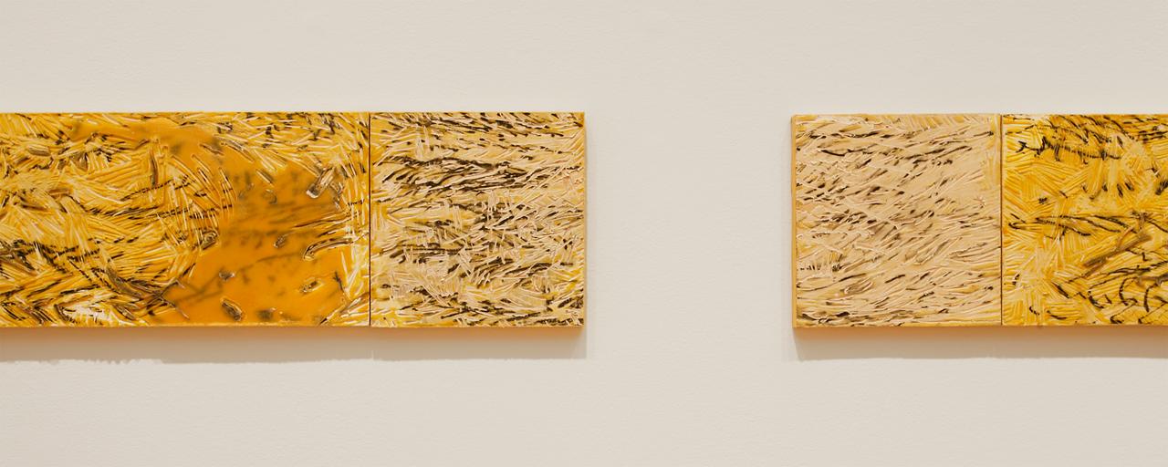 Amanda C. Sweet, Master of Fine Arts 2015