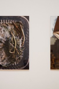 Sarah Skwira, Master of Fine Arts 2016