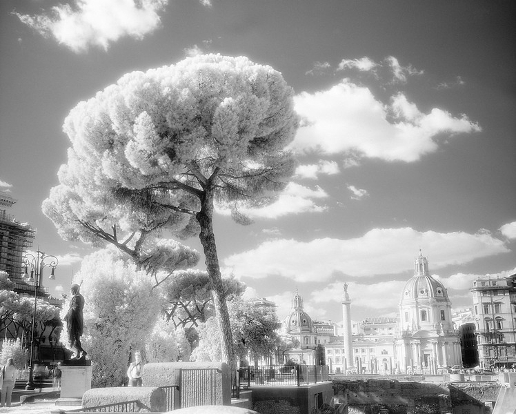 9 Rome 01