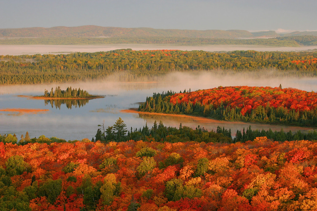 """AUTUMN 0624<br /> <br /> """"What a wonderful world""""<br /> <br /> Maples and morning fog, Swamp Lake"""