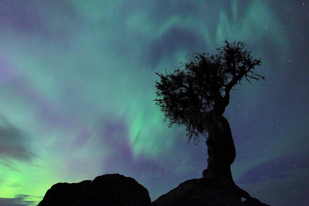 """AURORA 1396<br /> <br /> """"Aurora Storm - August 6, 2011"""""""