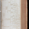 "The Great Bible, so called on account of its size, was the first authorised Bible in English. On Henry VIII's orders, each church was to have a copy so that all parishioners could hear or read the Bible in their first language. <br><br> Several former owners have annotated this small personal edition. One of them, most likely Richard Bryan, Vice-President of Queens' (1662–75), has painstakingly realised the contents of the Book of Lamentations in the form of a 'tree of knowledge' diagram. Like his marginal notes, its purpose is to summarise and clarify the text. Creases and tiny traces of ink reveal that Bryan kept the diagram folded inside a book for some time before having it bound into this Bible. Cobbled together from at least two different copies, Bryan's Bible has been much altered, its many signs of use reflecting the reverence in which it was held.<br><br> <br><br> <b>Title:</b><i>The Byble in Englyshe</i> (London, 1540), bound with<i> The Bible in Englishe </i> (London, 1562) <br> <b>Shelfmark:</b> B.2.18 <a href=""http://idiscover.lib.cam.ac.uk/primo-explore/fulldisplay?docid=44CAM_ALMA21407504280003606&amp;context=L&amp;vid=44CAM_PROD&amp;search_scope=SCOP_QUE&amp;tab=cam_lib_coll&amp;lang=en_US""> (catalogue record)</a>"