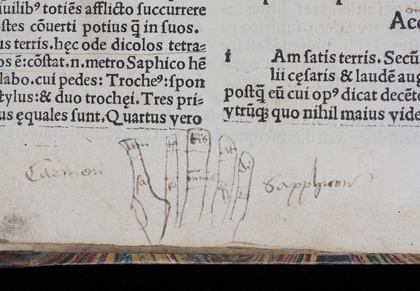 "Detail, showing the hand diagram. <br><br>  <b>Author:</b> Horace<br> <b>Title:</b><i> Odae </i>[Odes] (Paris, 1503)<br> <b>Shelfmark:</b> I.6.29  <a href=""http://idiscover.lib.cam.ac.uk/primo-explore/fulldisplay?docid=44CAM_ALMA21415610750003606&amp;context=L&amp;vid=44CAM_PROD&amp;search_scope=SCOP_QUE&amp;tab=cam_lib_coll&amp;lang=en_US""> (catalogue record)</a>"