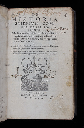 "<b>Author:</b> Leonhart Fuchs <br> <b>Title:</b><i> De historia stirpium commentarii insignes </i> (Lyon, 1549)<br> <b>Shelfmark:</b> H.19.5  <a href=""http://idiscover.lib.cam.ac.uk/primo-explore/fulldisplay?docid=44CAM_ALMA21420910460003606&amp;context=L&amp;vid=44CAM_PROD&amp;search_scope=SCOP_QUE&amp;tab=cam_lib_coll&amp;lang=en_US""> (catalogue record)</a>"