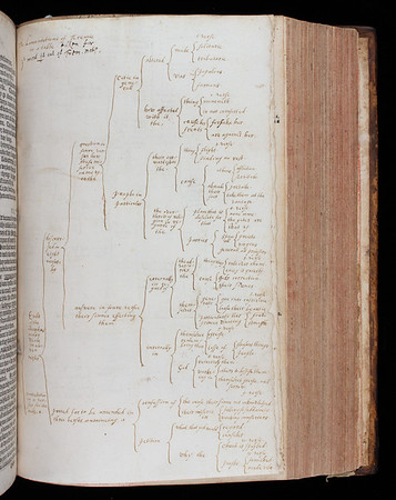 The Great Bible, so called on account of its size, was the first authorised Bible in English. On Henry VIII's orders, each church was to have a copy so that all parishioners could hear or read the Bible in their first language.  Several former owners have annotated this small personal edition. One of them, most likely Richard Bryan, Vice-President of Queens' (1662–75), has painstakingly realised the contents of the Book of Lamentations in the form of a 'tree of knowledge' diagram. Like his marginal notes, its purpose is to summarise and clarify the text. Creases and tiny traces of ink reveal that Bryan kept the diagram folded inside a book for some time before having it bound into this Bible. Cobbled together from at least two different copies, Bryan's Bible has been much altered, its many signs of use reflecting the reverence in which it was held.  Title:The Byble in Englyshe (London, 1540), bound with The Bible in Englishe  (London, 1562)  Shelfmark: B.2.18  (catalogue record)