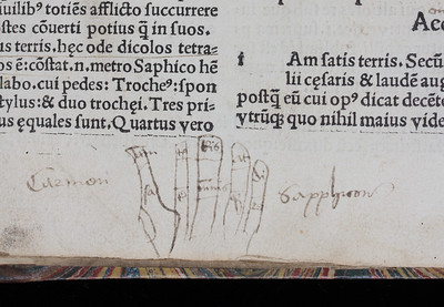 Detail, showing the hand diagram.   Author: Horace Title: Odae [Odes] (Paris, 1503) Shelfmark: I.6.29   (catalogue record)