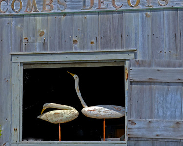 Decoy Shed