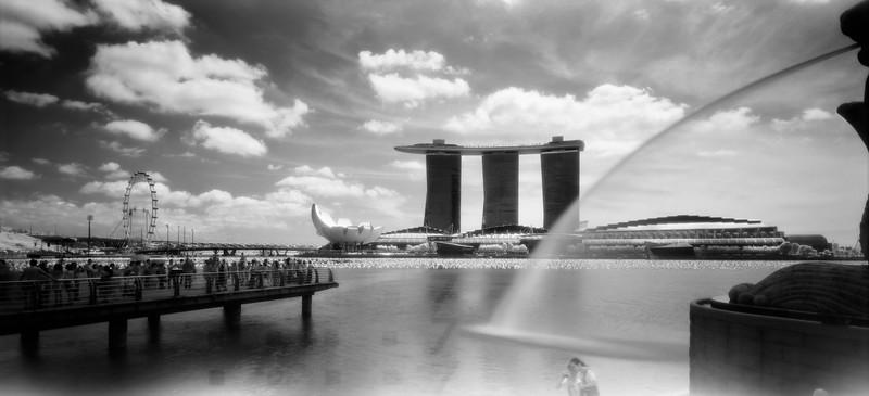 23  Singapore Bluis