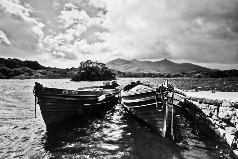The banks of Killarney. Killarney, Co. Kerry, Ireland. 2009.  24 x 16 inches.<br /> 8 Prints Available.<br /> £95.00.