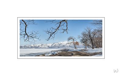 Treescape II, Lake Kussharo