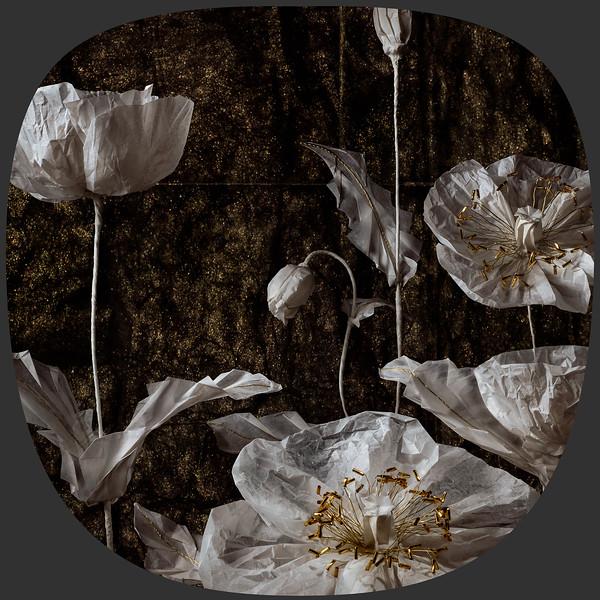 KorinGami - Poppies