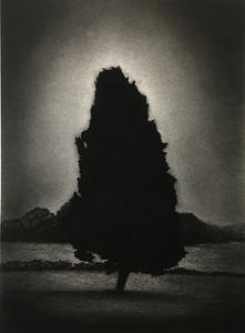 Nightfall, charcoal on paper framed 92 x72cm $2,500.