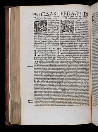 """<b>Author:</b> Dioscorides Pedanius of Anazarbos<br> <b>Title:</b><i> De medica materia libri V </i> [On medical materials] (Cologne, 1529) <br> <b>Shelfmark:</b> F.9.29(1) <a href=""""http://idiscover.lib.cam.ac.uk/permalink/f/1nnjft8/44CAM_ALMA21415587160003606""""> (catalogue record)</a>"""