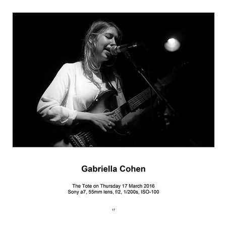 "$145 Gabriella Cohen (12"" x 18"")"