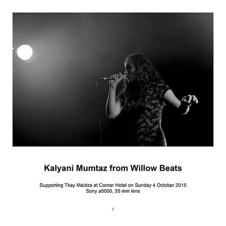 """$95 Kalyani Mumtaz from Willow Beats (8"""" x 12"""")"""