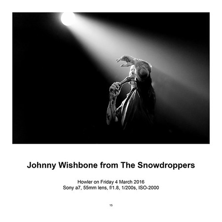 "$145 Johnny Wishbone from The Snowdroppers (12"" x 18"")"