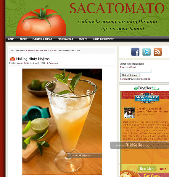"Sacatomato<br />  <a href=""http://www.sacatomato.com/mojitos-mint-syrup"">http://www.sacatomato.com/mojitos-mint-syrup</a>"