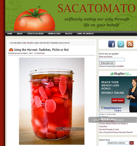 """Sacatomato<br />  <a href=""""http://www.sacatomato.com/using-the-harvest-radishes-pickle-or-not"""">http://www.sacatomato.com/using-the-harvest-radishes-pickle-or-not</a>"""