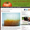 Sacatomato-sauerkraut